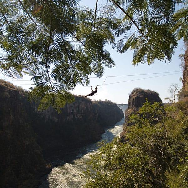 Canopy Toe Victoria Falls Zimbabwe