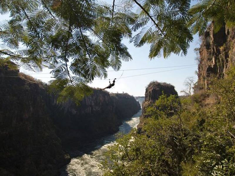 The Canopy Tour Victoria Falls Adrenaline Activities